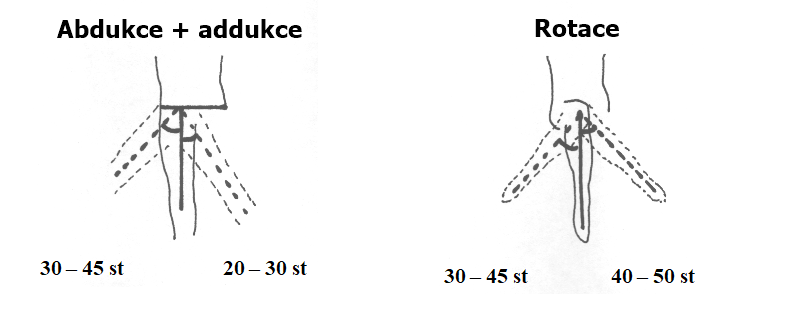 Fyziologicka hybnost kycle 2