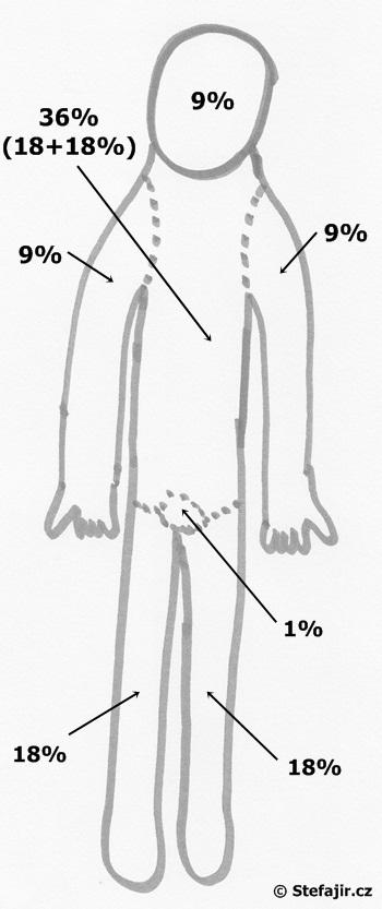 Popaleniny - schema
